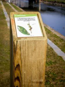 Signalétique Touristique Borne Bois